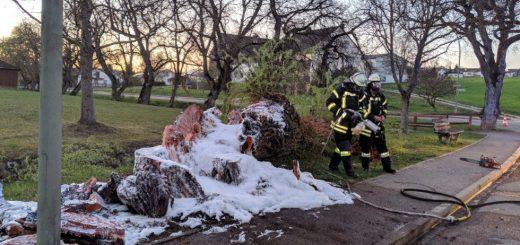 Brennender Baum im Schießstattweg in Monheim